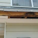 calvert painting carpenter repair 01